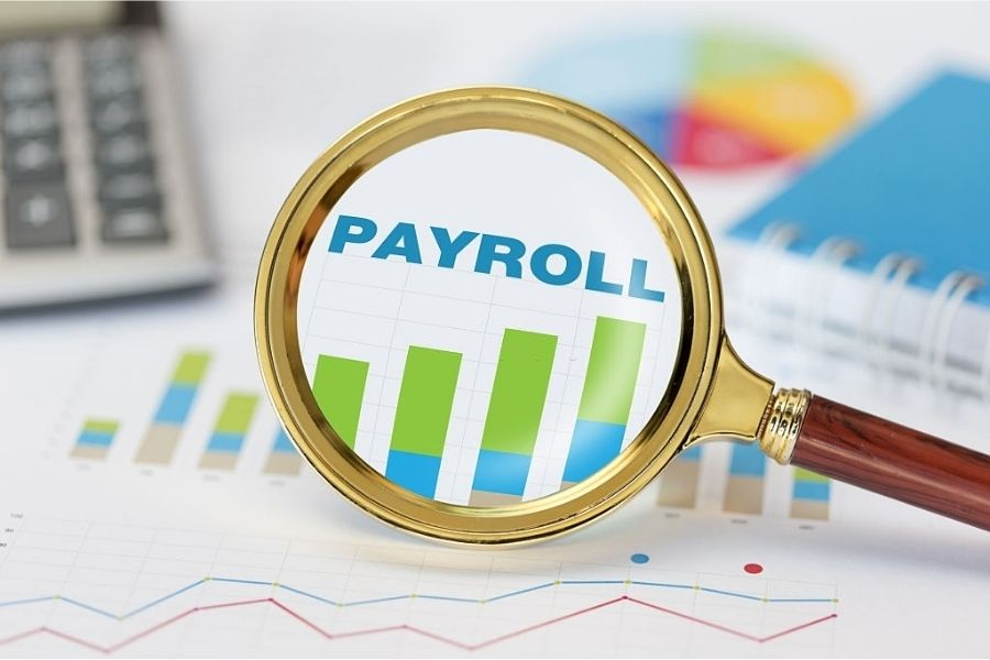 Importance of Automated Payroll System for HR Departments